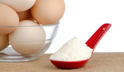 Яичный протеин: как выбрать и правильно принимать